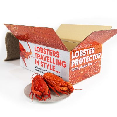 THREE Time WorldStar Award winners with Lobster Protector
